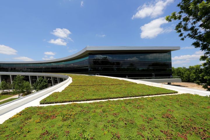 Green+Roof+-+TCE_f8682891-0228-44c1-966e-3720a7848078-prv