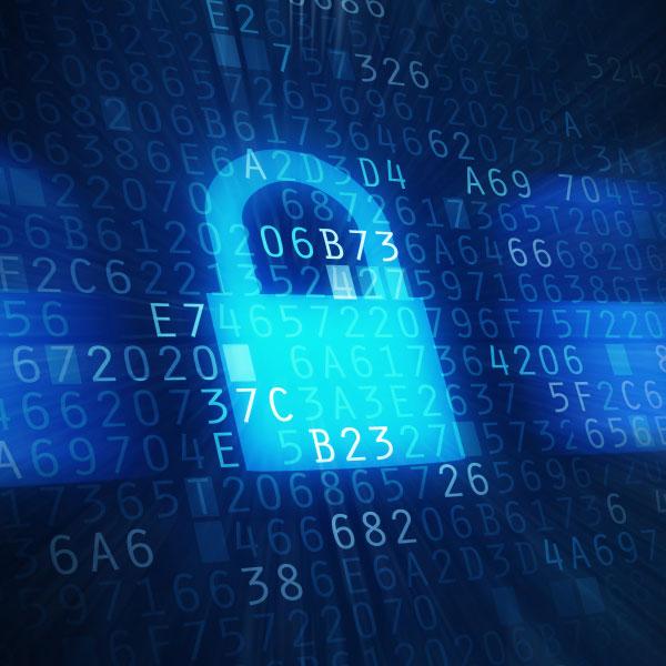 Internet Safety Guide: Viruses & Malware