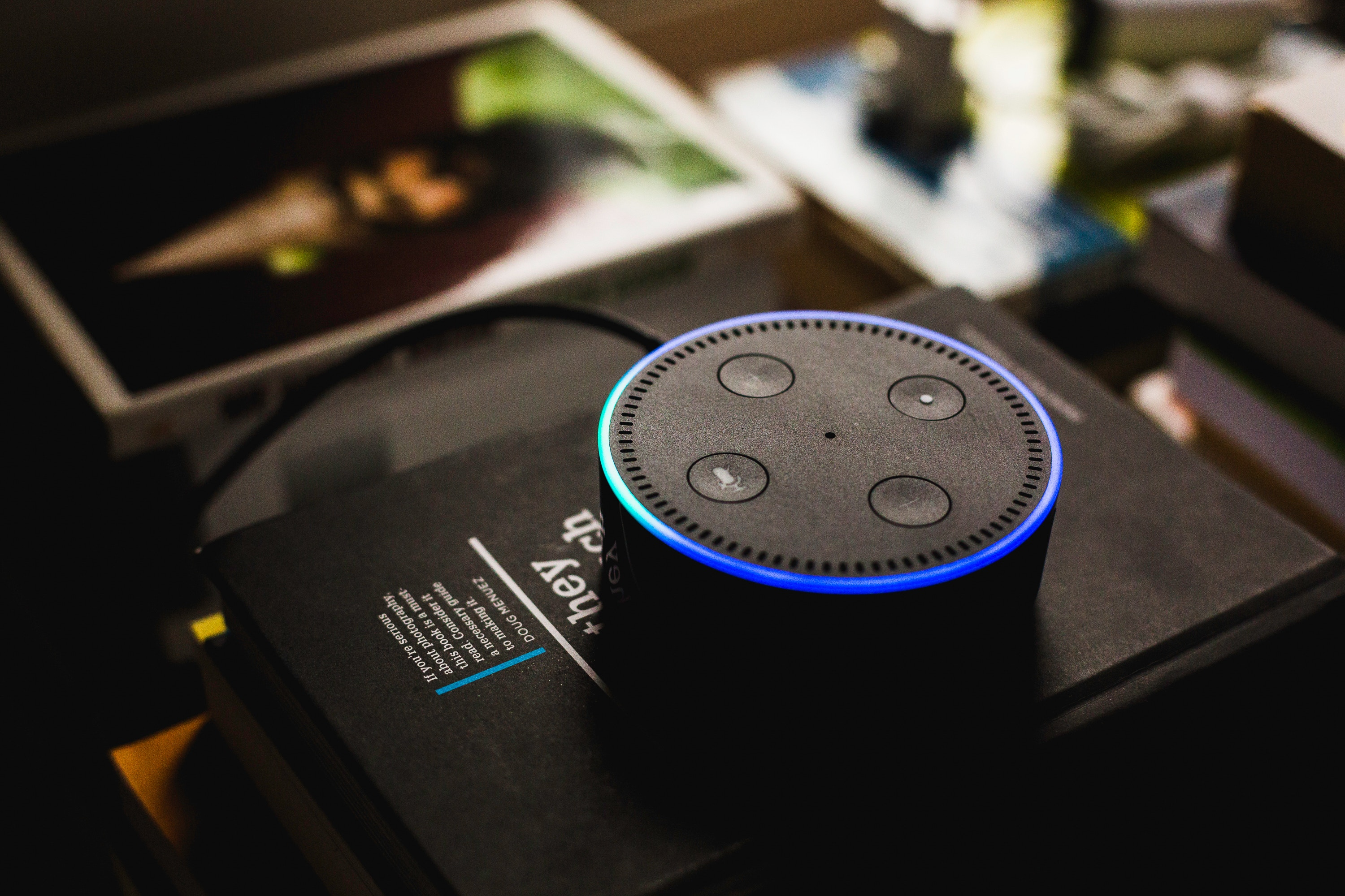 amazon echo internet digital assistant